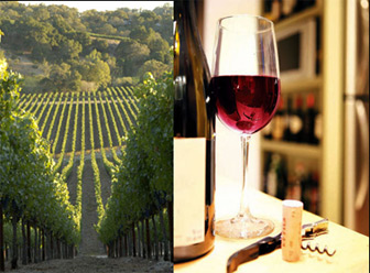 Russian River wine country tours